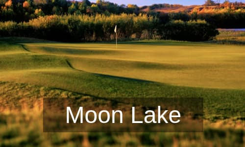 Moon Lake Golf Course Homes for Sale