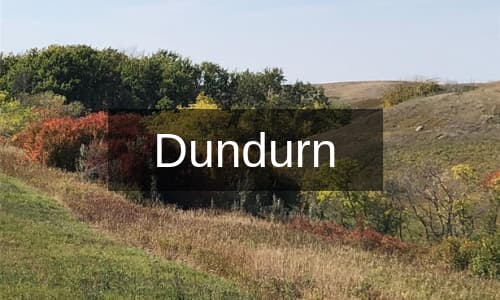 Homes for Sale Dundurn
